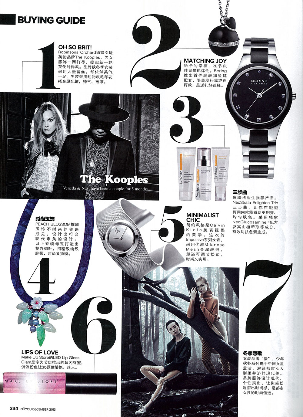 2013 12 - NUYOU Buying Guide